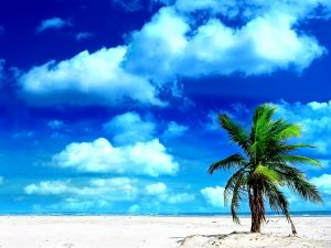 Beach-Holiday-Wallpaper